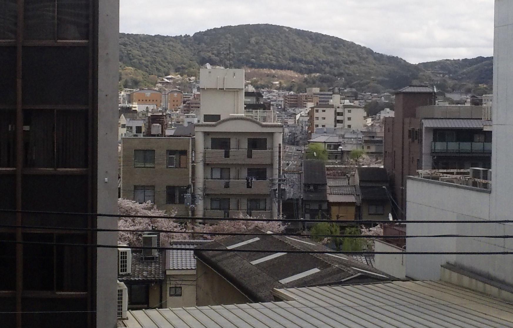 引っ越しをした、窓の風景から春の色_b0182223_1512375.jpg