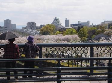 今日は、大阪に_c0040328_21583232.jpg