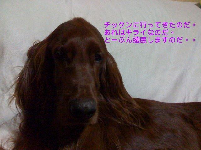 f0039538_22283764.jpg