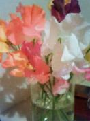 f0159450_0103229.jpg