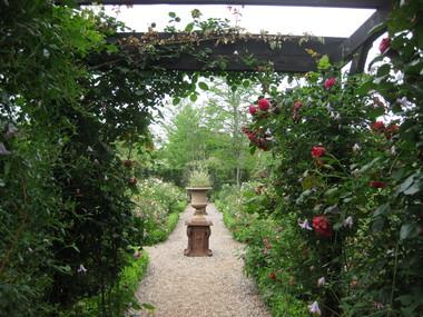 バラの庭を夢見て~_f0236260_14265925.jpg