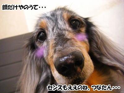 d0020869_2514194.jpg