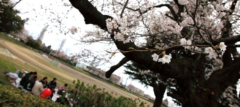10年4月10日・BLOG友_c0129671_14372163.jpg