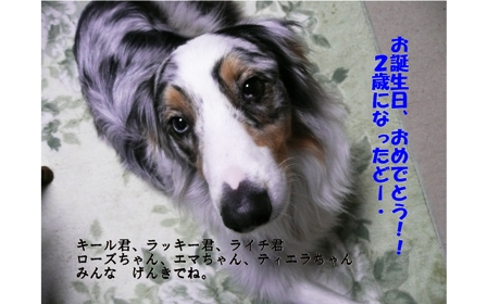 f0077697_184995.jpg