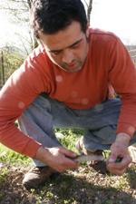 春の畑の収穫物は美味しいサラダ菜!~4月の畑_f0106597_15234110.jpg