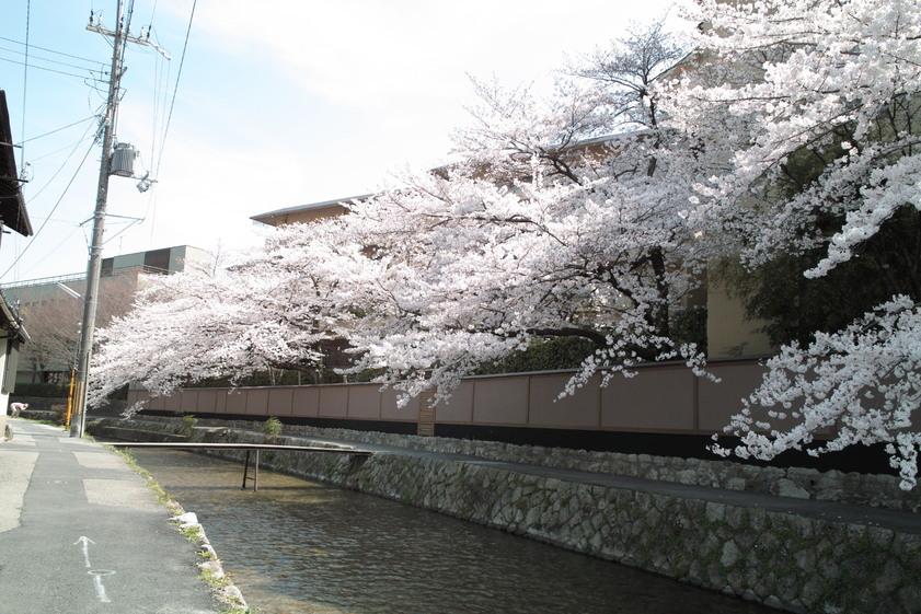 京都 その2_c0212902_9562095.jpg