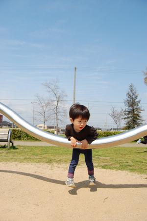 春の公園_e0195830_813734.jpg