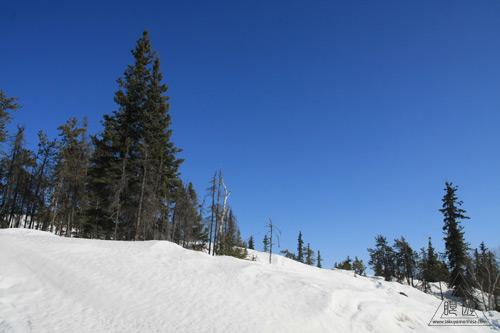 034 Yellowknife ~犬ぞりレースと丘探検~_c0211532_125847100.jpg