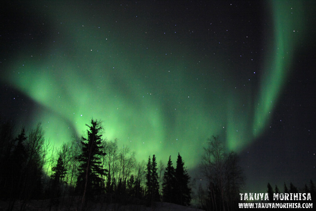 035 Aurora Village ~オーロラ撮影2夜目~_c0211532_14213871.jpg