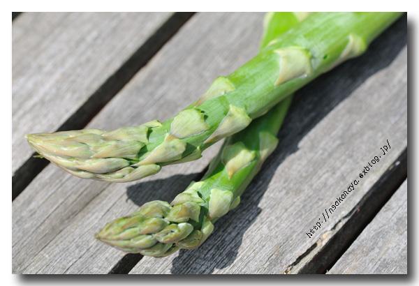 タラの芽とグリーンアスパラガス 〜 春の食材 〜_d0069838_11463992.jpg