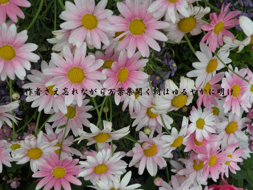 f0117041_16283796.jpg