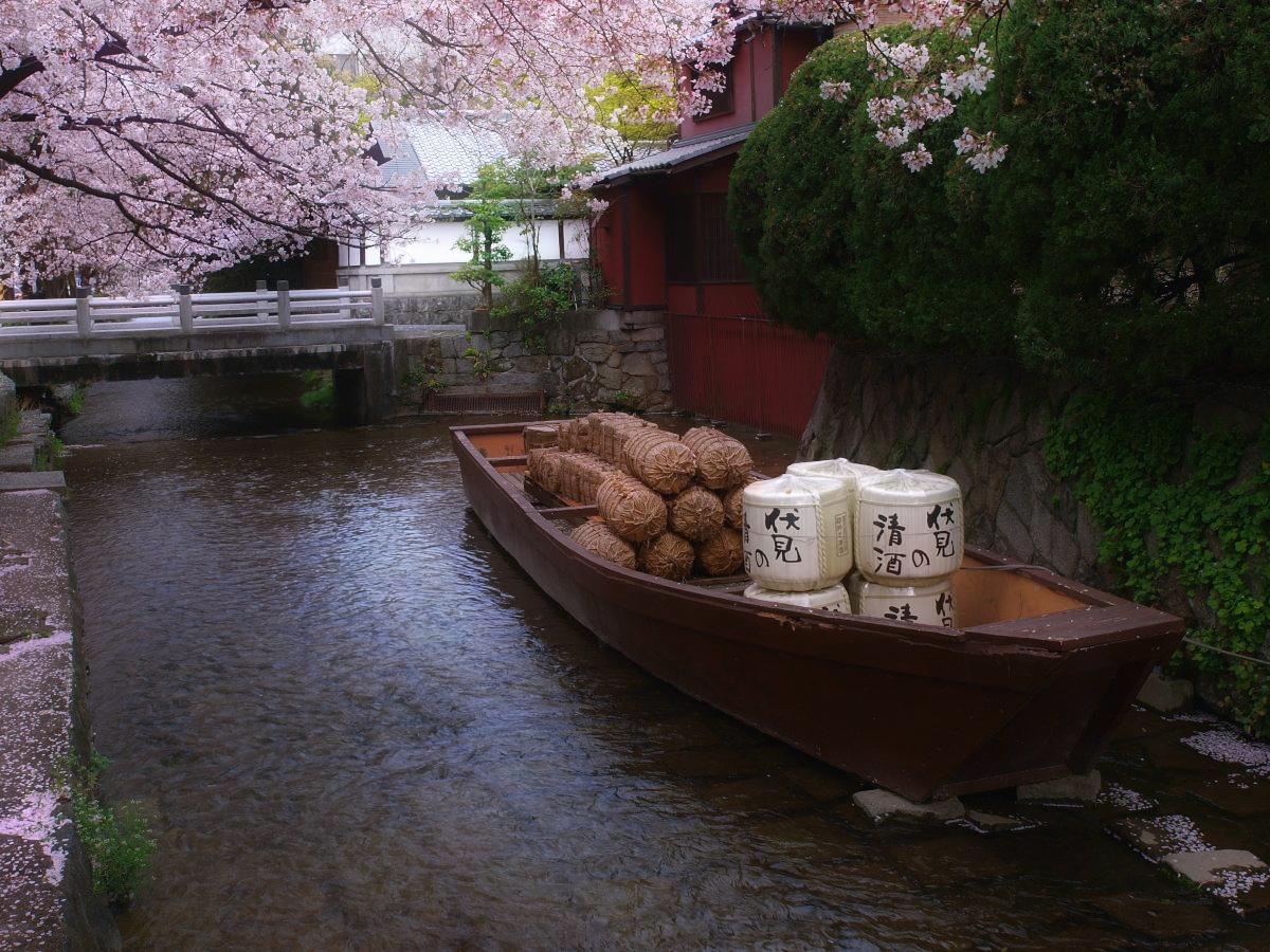 京都 高瀬舟と桜 _f0021869_00599.jpg