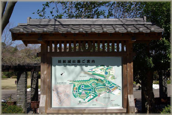 浜松城公園_b0093088_95357.jpg