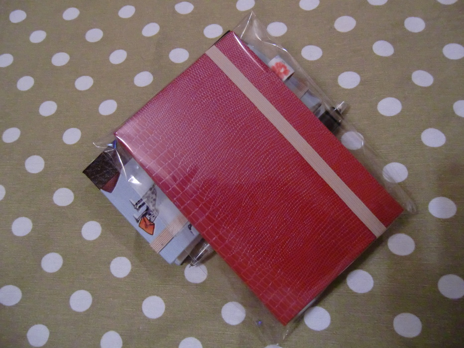 手帳ケース(スキバル)とレモンケーキ_f0214388_10362345.jpg