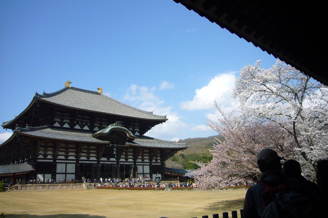 日本に帰国し早一ヶ月・・・_c0182100_1202753.jpg