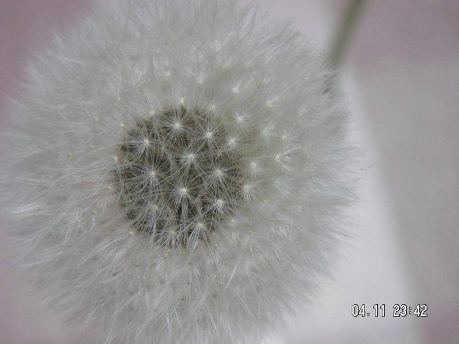 f0146802_022084.jpg