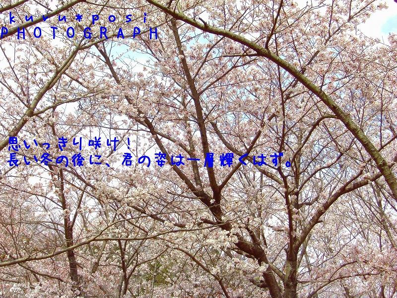 f0224011_21202339.jpg