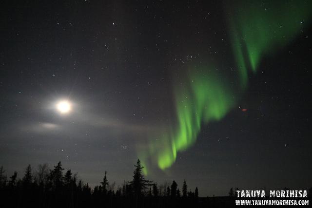 037 Aurora Village ~オーロラ撮影3夜目~_c0211532_1242714.jpg