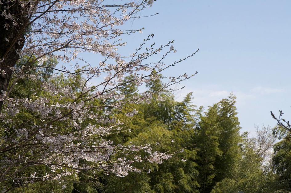 桐生 丘公園 (桐生が岡遊園地)_e0127948_19354063.jpg