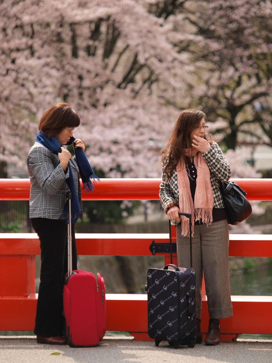 京都 岡崎疎水 桜_f0021869_20294663.jpg