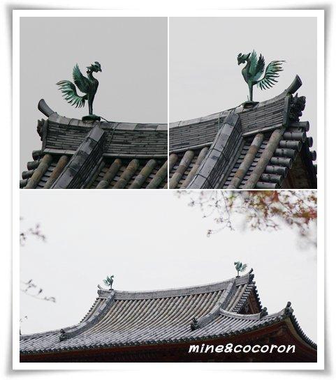 宇治川の桜_a0053987_2227417.jpg