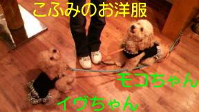 f0175397_8264929.jpg