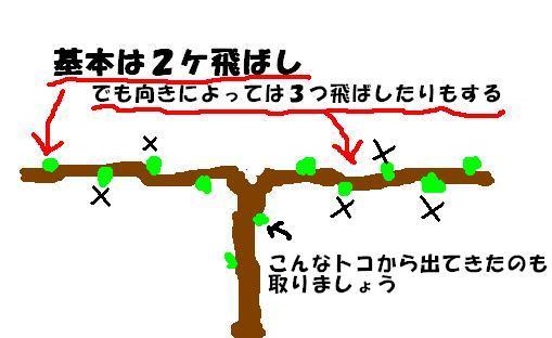b0094717_1724648.jpg