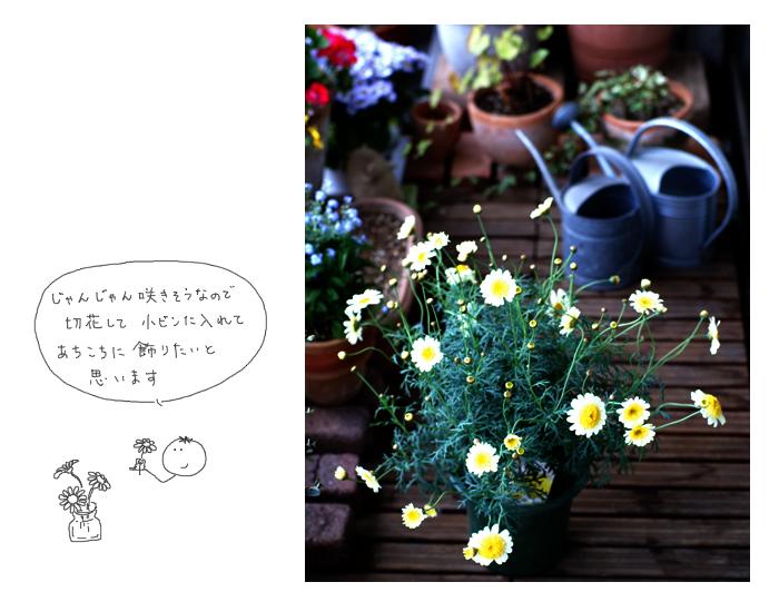 e0065818_19134081.jpg