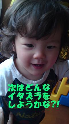 b0153121_14145034.jpg