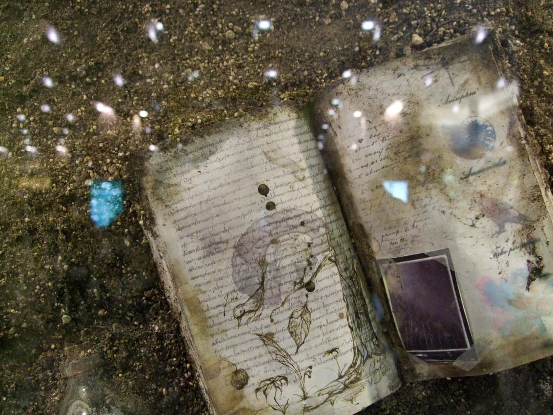 1263) JRタワーARTBOX 「[a stratum 地層とともに眠る記憶] Blakiston菅原英二」 2月1日(月)~4月29日(木)_f0126829_15123175.jpg
