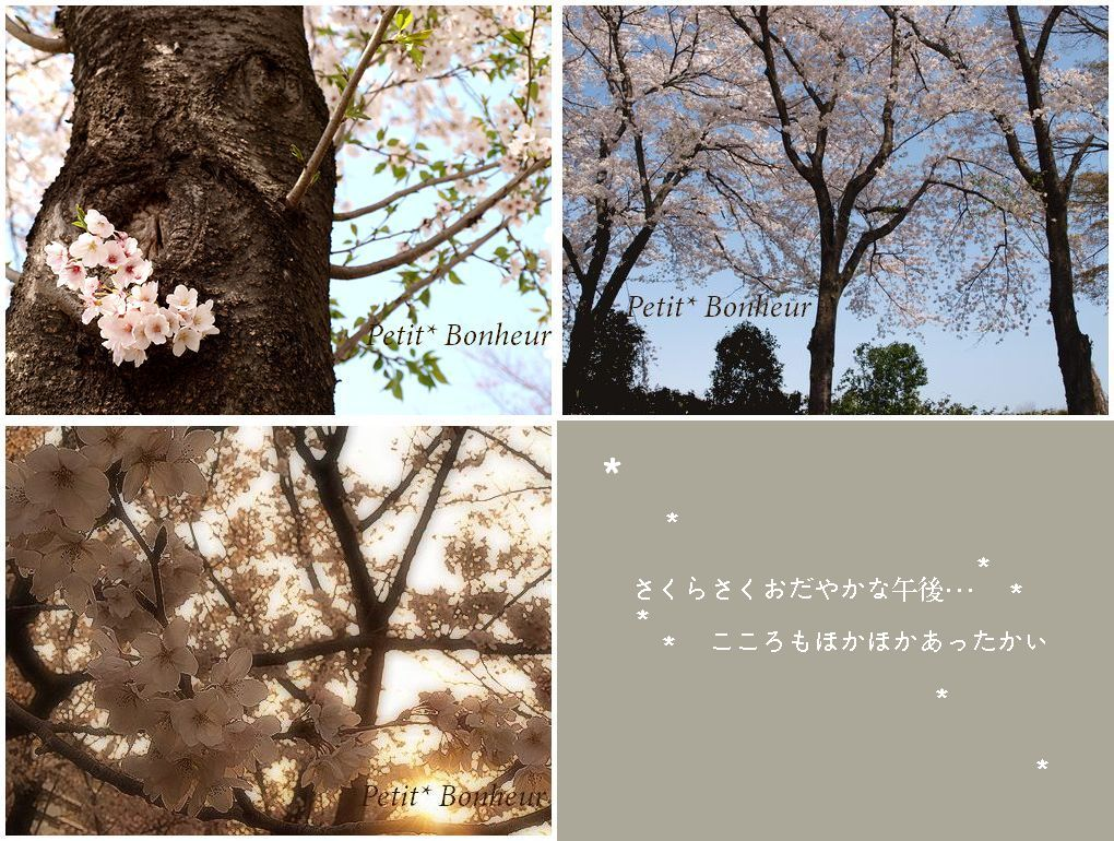 c0194836_230868.jpg