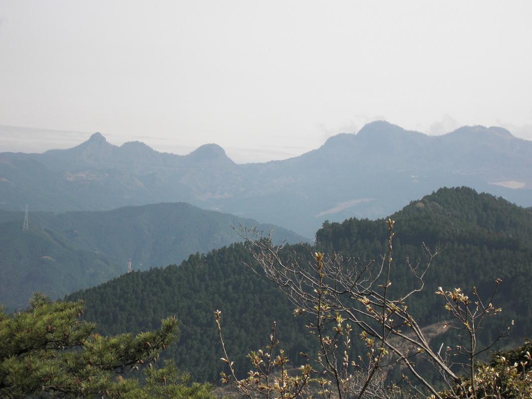 岩石山へお花の下見_e0164643_22373534.jpg