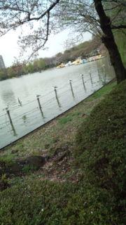 上野公園に行きましたぁ_e0114246_1582722.jpg