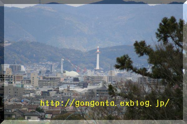e0085147_1453367.jpg