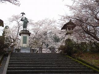 ☆桜満開・・・☆_c0208355_15425383.jpg