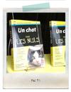 猫端会議。_c0163892_4592243.jpg