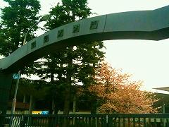 「夢舞いマラソン」試走会_a0036808_14415082.jpg