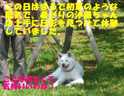 f0121712_15441759.jpg