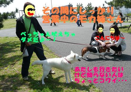 f0121712_15443756.jpg