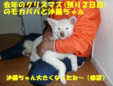 f0121712_1705447.jpg