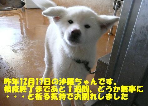 f0121712_1713447.jpg