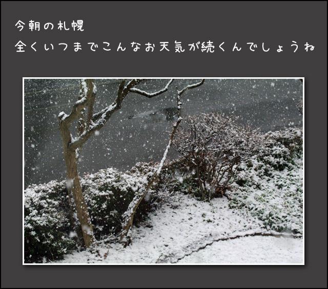b0019313_177557.jpg