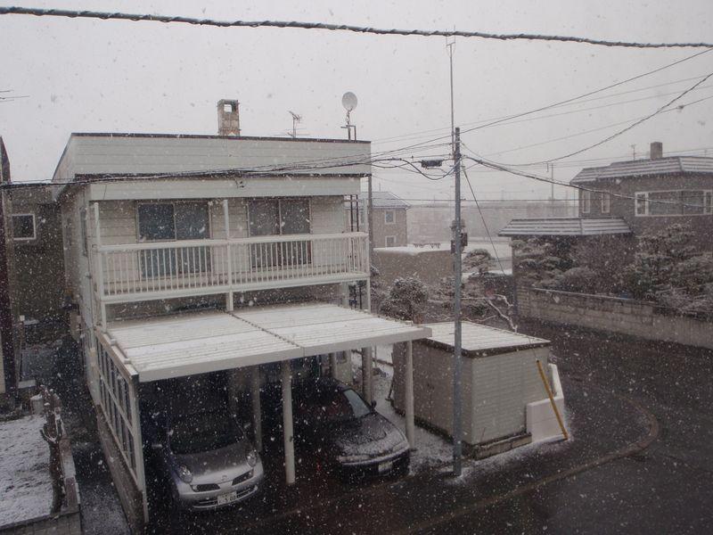 【春の嵐」から「冬の嵐」へ_c0025115_2043232.jpg