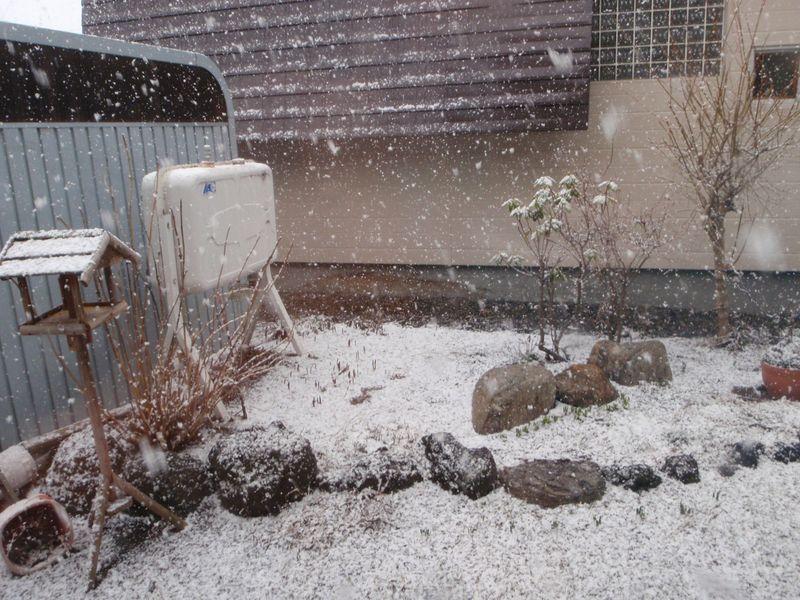 【春の嵐」から「冬の嵐」へ_c0025115_206577.jpg