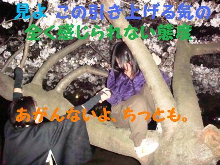 d0137326_15203597.jpg