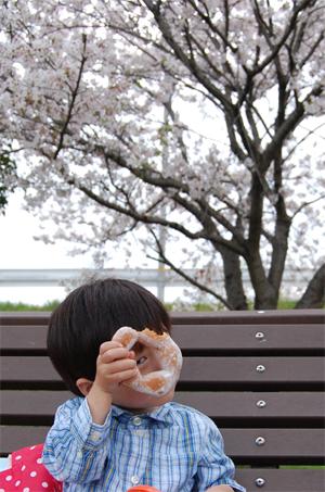 土手の桜_e0195830_164246.jpg