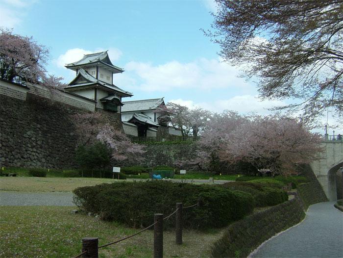 葉桜もまた風情なり_c0110051_20553765.jpg