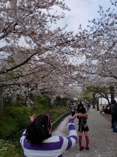 お花見大会!!_f0059796_1512813.jpg