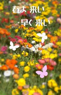 f0227323_15381375.jpg
