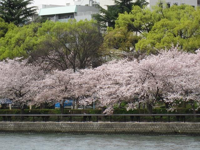 水都 大阪_f0099231_23431644.jpg
